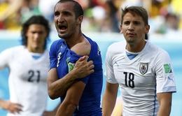 "World Cup 2014: Cắn Chiellini, Luis Suarez nhận ""gạch"" từ mọi hướng"