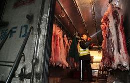 Trung Quốc: Doanh số bán thịt lợn sụt giảm