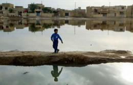 10 năm sau chiến tranh: Iraq vẫn khát vọng hòa bình