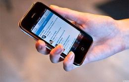 Apple khẳng định không sản xuất smartphone giá rẻ