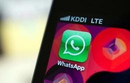 Ứng dụng nhắn tin WhatsApp vi phạm luật quốc tế
