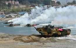Mỹ - Hàn Quốc tiếp tục tập trận chung
