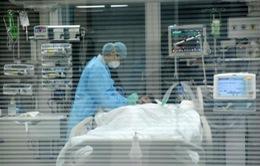 Trung Quốc: Thêm 19 trường hợp nhiễm H7N9 trong 1 tuần