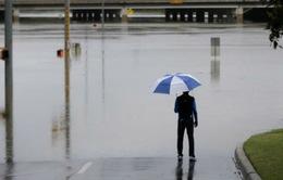 Mỹ: Lũ lụt nghiêm trọng tại bang Texas