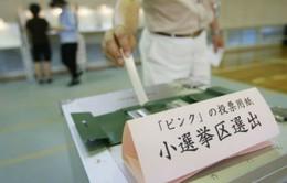 Nhật công nhận quyền bầu cử của người chậm phát triển trí tuệ