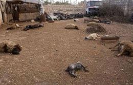 LHQ: Vũ khí hóa học đã được sử dụng tại Syria