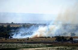 Quân nổi dậy Syria chiếm được cửa khẩu Quneitra