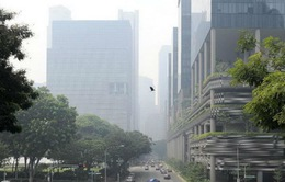 Khói độc hại bao phủ Singapore