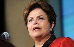 Đối phó biểu tình, Tổng thống Brazil đề xuất trưng cầu dân ý