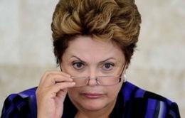 Quốc hội Brazil bác bỏ dự luật sửa đổi hiến pháp