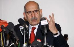 Phe đối lập tại Ai Cập chọn người đại diện đàm phán