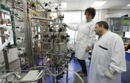 Israel phát triển vaccine viêm gan B mới
