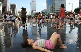 Nắng nóng tại Hàn Quốc, 8 người thiệt mạng