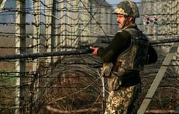 Pakistan lo ngại về tình hình biên giới