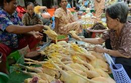 Thêm 1 bé người Campuchia vùng giáp với Việt Nam nhiễm H5N1