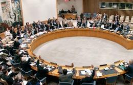 Cuộc họp Hội đồng Bảo an LHQ không đạt kết quả