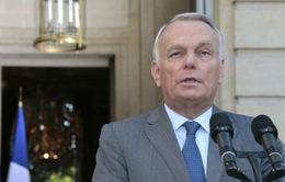 Pháp không hành động đơn phương tại Syria