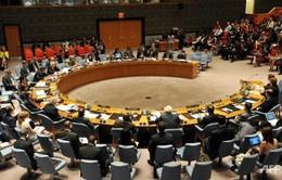 Các thành viên thường trực Hội đồng Bảo an LHQ nhóm họp về Syria