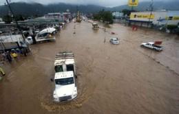 Mexico dùng máy bay cứu hộ dân trong trận lụt lịch sử