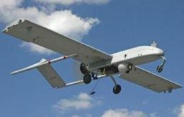 Trung Quốc bác tin đánh cắp công nghệ máy bay Mỹ