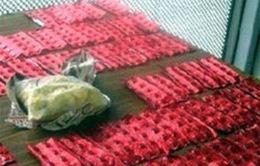Ấn Độ bắt giữ lượng ma túy trị giá 6,3 triệu USD