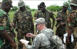 Châu Phi thiết lập cơ chế khu vực chống khủng bố