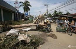 Trung Quốc ban bố báo động đỏ với bão Nari