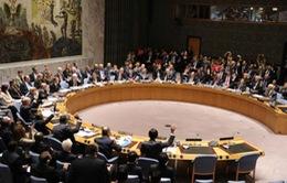 LHQ bầu mới 5 thành viên không thường trực Hội đồng Bảo an