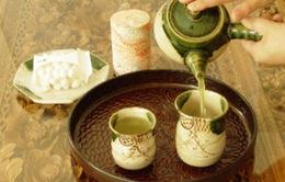 Cây chè Thái Nguyên và nét văn hóa lâu đời của người Việt