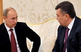 Ukraine ngừng ký kết thỏa thuận thương mại với EU
