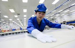 PMI sản xuất tháng 11 của Trung Quốc giảm