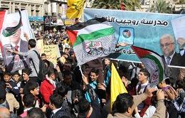 Ngày quốc tế đoàn kết với nhân dân Palestine