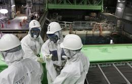 Nhật tháo dỡ các thanh nhiên liệu Fukushima