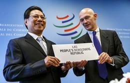 Khai mạc Hội nghị Bộ trưởng WTO lần thứ 9