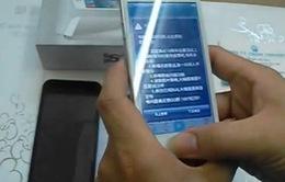"""iPhone 5s """"nhái"""" tràn ngập thị trường"""
