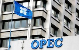 OPEC giữ mục tiêu sản lượng 30 triệu thùng dầu/ngày