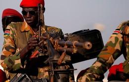 Phiến quân Nam Sudan đánh chiếm mỏ dầu quan trọng