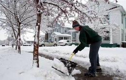 Mỹ: Bão tuyết làm 9 người thiệt mạng