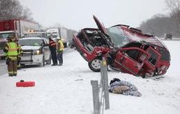 Nhiều bang tại Mỹ chìm trong bão tuyết