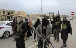 Quân đội Iraq nỗ lực đánh bật các phần tử al-Qaeda