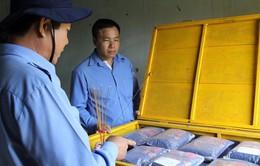 Tìm kiếm hài cốt chiến sĩ Việt Nam tại Campuchia