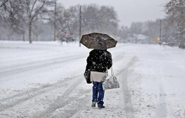 Mỹ: Giá lạnh làm 21 người thiệt mạng
