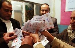 Người dân Ai Cập ủng hộ dự thảo hiến pháp mới