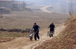 Chính sách ưu tiên hàng đầu của Trung Quốc trong năm 2014
