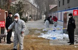 Trung Quốc phát hiện thêm 4 trường hợp nhiễm virus H7N9
