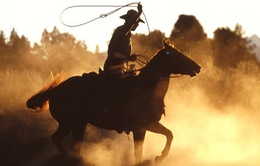 Cao bồi – biểu tượng của miền Tây nước Mỹ