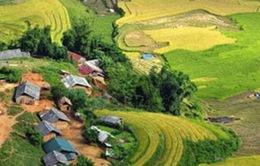 Lào Cai: 3 ngày xảy ra 2 trận động đất
