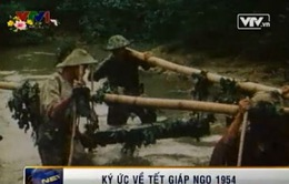 Tết Giáp Ngọ, 1954