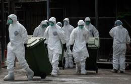 Trung Quốc xác nhận thêm 11 trường hợp nhiễm cúm H7N9