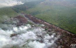 Indonesia: Khói bụi bao trùm đảo Sumatra